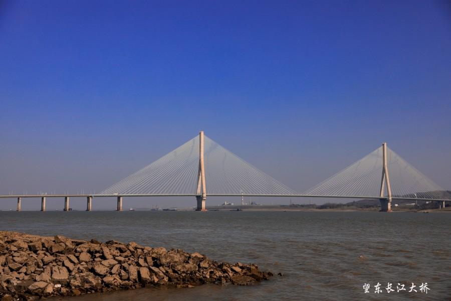 望东长江大桥 2021.1.18